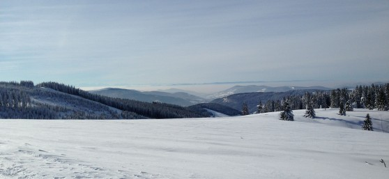 WinterFeldberg